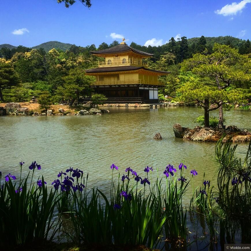 Золотой павильон в Киото. Одна из обязательных остановок для приезжих.