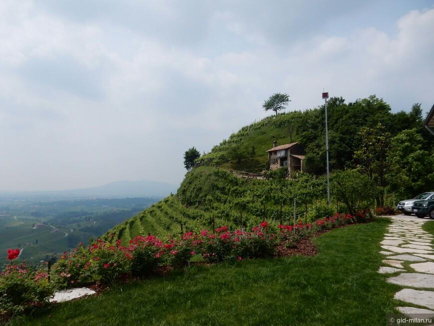 """Обе винодельни находятся в самой элитной подзоне для просеко, это всего-лишь южный склон вот этого холма. Здесь вызревает просеко с деноминацией Cartize, что называется """"почувствуйте разницу""""."""