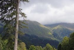 В горах Сочи молния попала в туриста