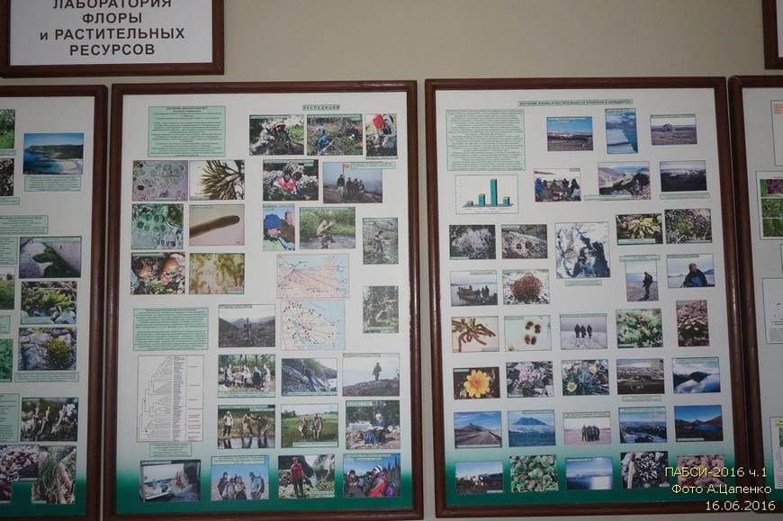 Стенды лаборатории флоры и растительных ресурсов.