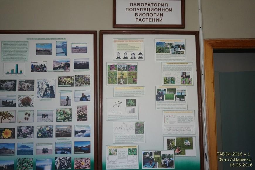 Стенды лаборатории популяционной биологии растений