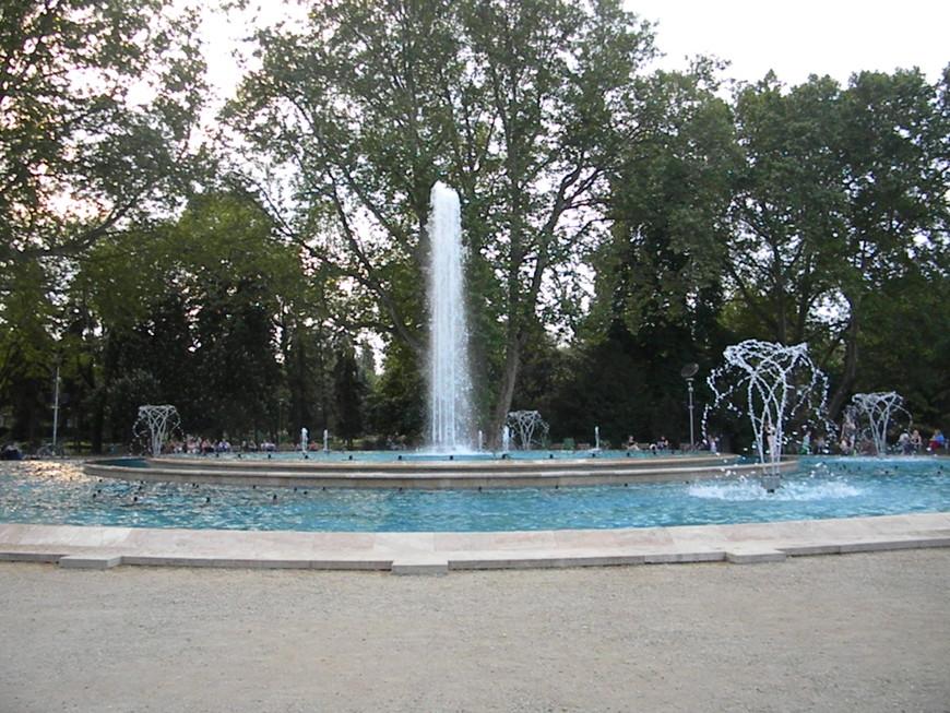 Поющие, мигающие, танцующие фонтаны на острове Маргит. Это правда, очень красиво, пойдёте не пожалеете)))))