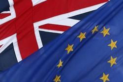 Подсчитаны голоса по референдуму в Великобритании