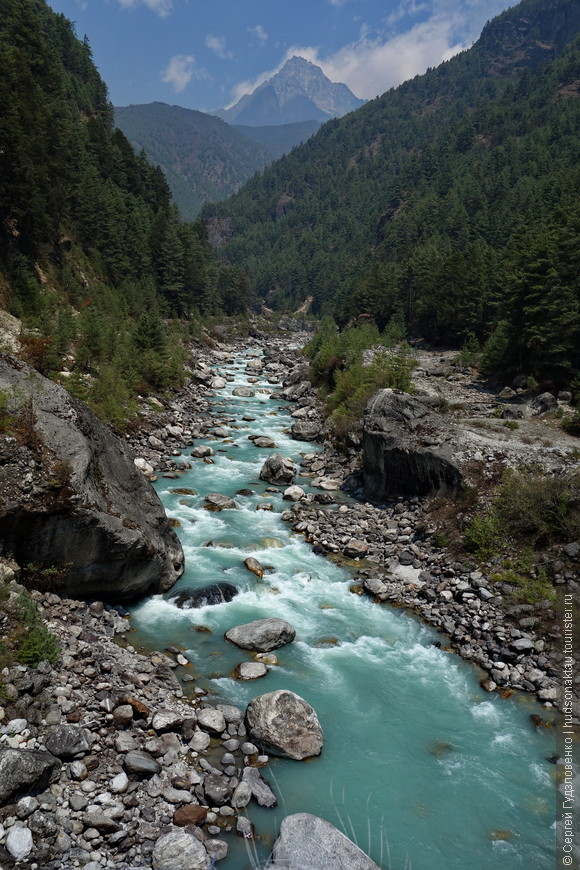 Шум рек, пение птиц и тишина - лучшие попутчики