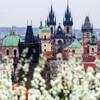 Все красоты Златой Праги. Большая обзорная авто-пешеходная экскурсия. Старый Город. Экскурсии с частным индивидуальным гидом по Праге.