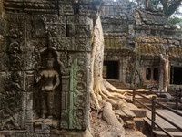 Королевство Камбоджа #1: Ангкор, Пном Кулен
