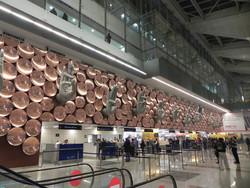 Аэропорт Дели открывает стойки регистрации в метро