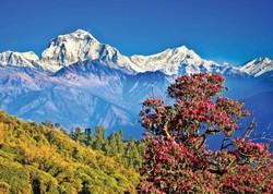 Непал: чем заняться?