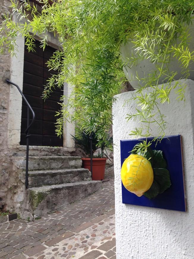 Все номера домов, вывески и сувениры о лимонах.