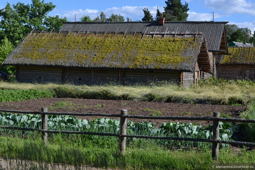 А такую картину можно и сегодня в деревне увидеть. Прошлое и настоящее разговаривает.