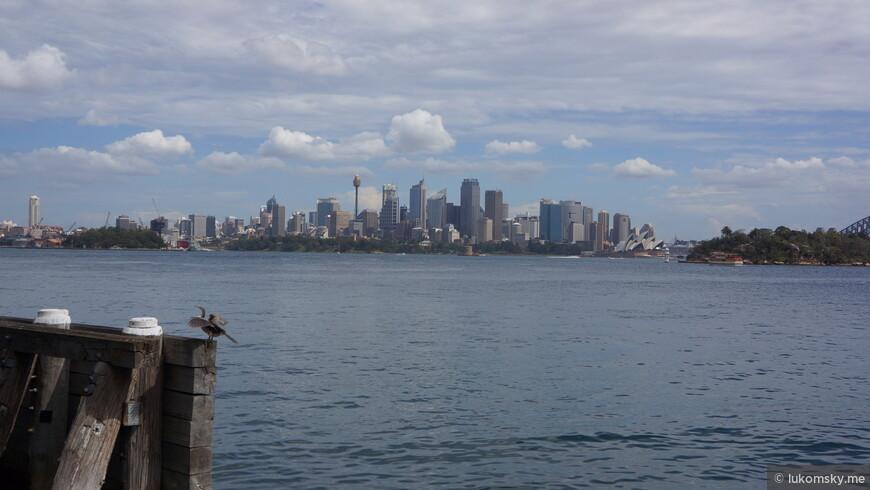 Вид на Сидней со стороны зоопарка