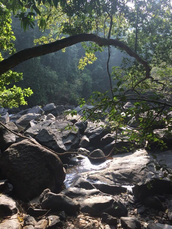 Пешком по руслу реки к водопаду Сурла в штате Карнатака.