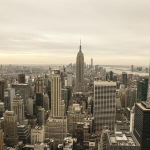 США (Нью-Йорк)