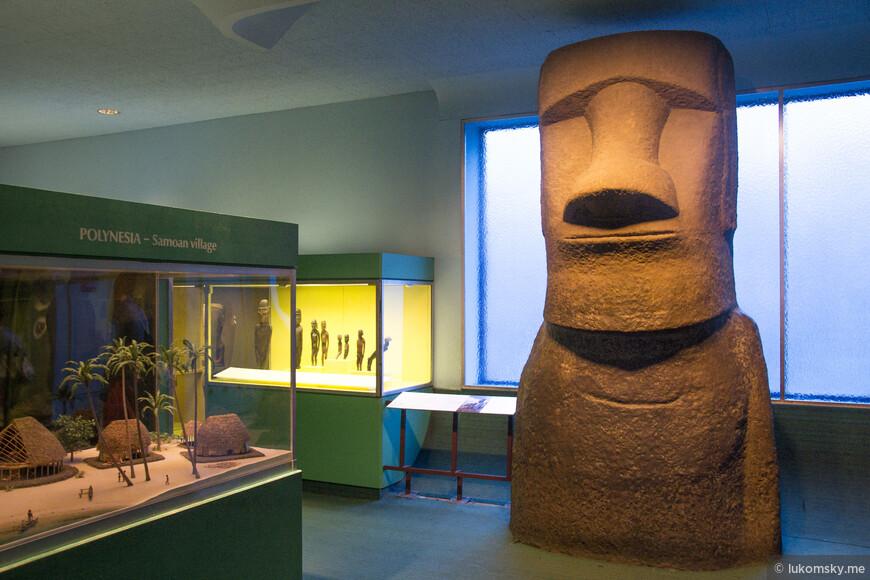 Американский музей естественной истории (American Museum of Natural History) ДАМ ДАМ! У тебя есть ГАМ ГАМ!?