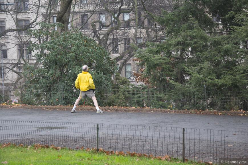 Нью-Йорк, центральный парк, конец декабря