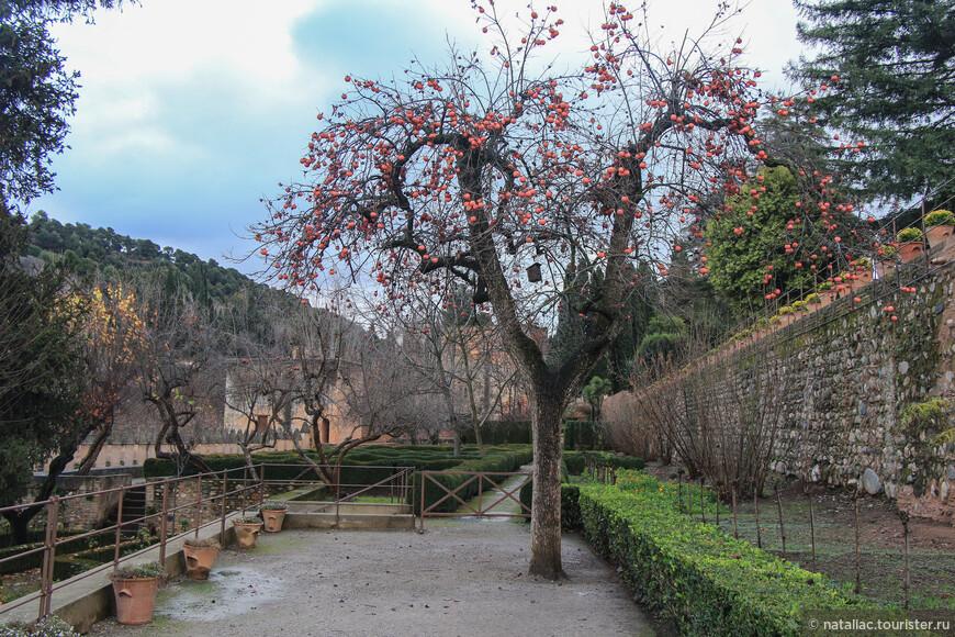 Территория садов Парталь.
