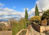В зимних садах Альгамбры.