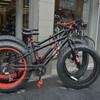 На таком велосипеде не страшно и по бездорожью, и можно доехать хоть до Ташкента...