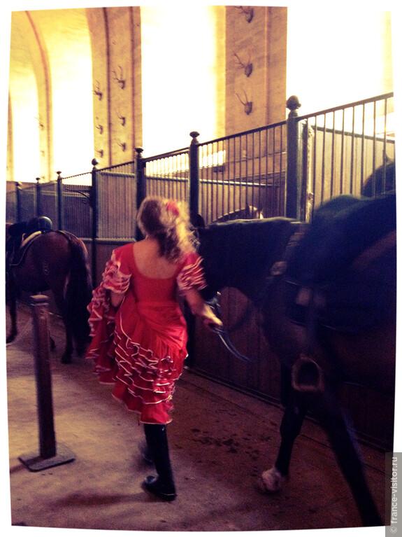 """Красавица """"Кармен"""" ведет свою лошадь на выступление"""