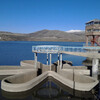 Маргаритка Кечутского водохранилища