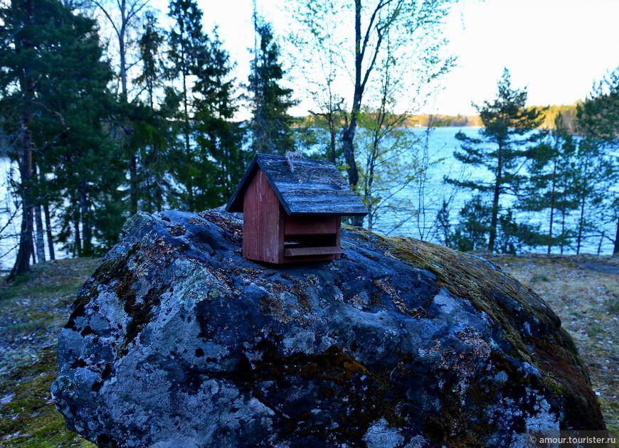 Рядом с домом такая интересная кормушка на камне.