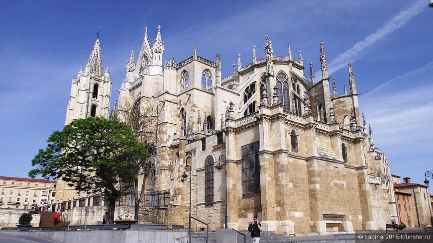 Строительство Леонского Собора началось около 1255 года при епископе Мартине Фернандесе, занимавшего видное место советника короля королевства Кастилии и Леона - Альфонса X. Возглавил проект мастер Энрикус, который в свое время руководил второй стадией строительства собора в Бургосе.