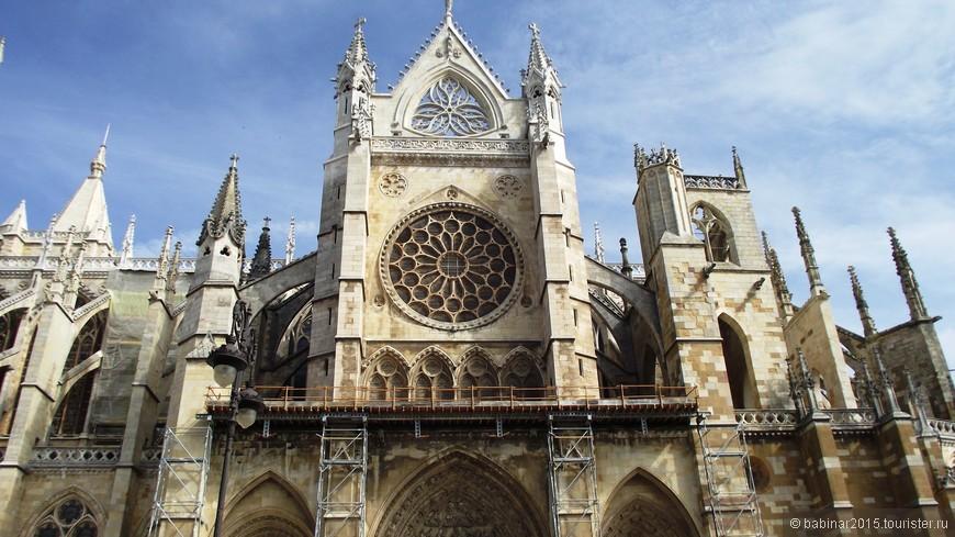 Собор строился на месте римских бань, которые по своим размерам превосходили нынешний кафедральный собор. Во время христианского завоевания древние римские бани были перестроены в королевский дворец, построенный Ордоньо II. Кафедральный собор был возведен в честь победы Короля Ордоньо II над арабами в битве при Сан-Эстебан-де-Гормас в 917.