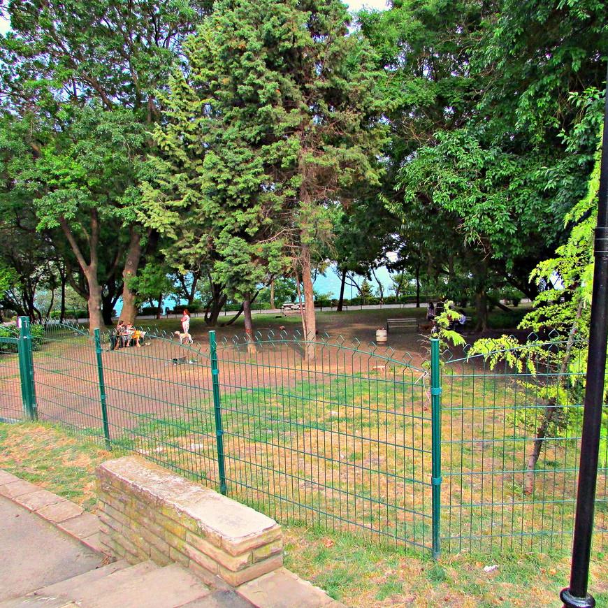 Место выгула собак отделено от зоны отдыха людей.