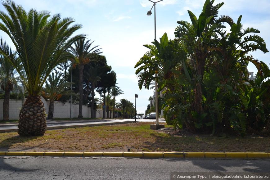 Улицы Агуадульсе