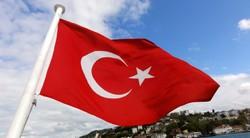 В Турции введен режим ЧП