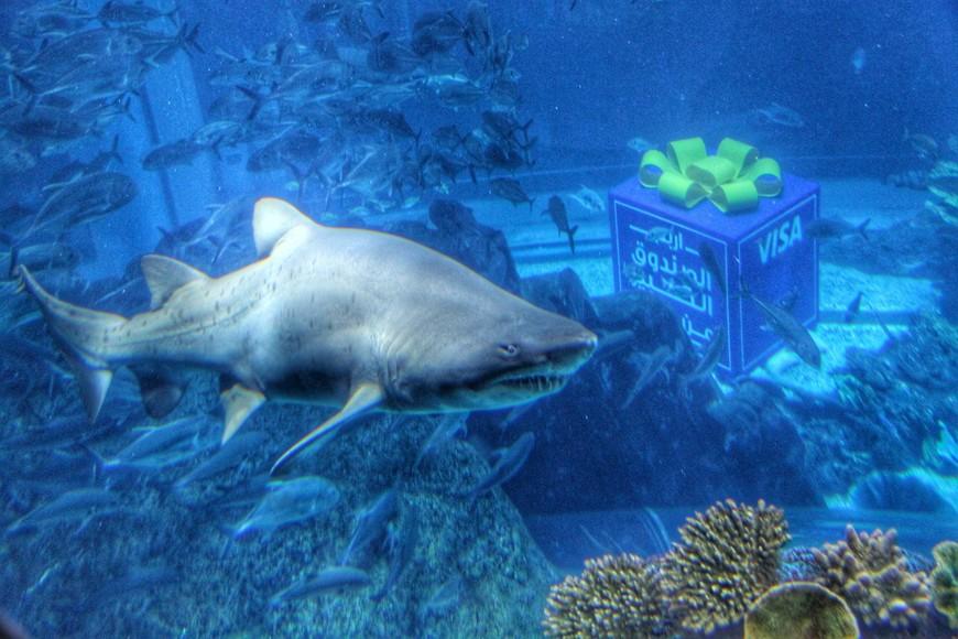 Через чашу аквариума, вмещающую 10 млн литров воды, проходит туннель, застеклённый сверху, так что можно пройти по туннелю и с близкого расстояния рассмотреть обитателей аквариума, проплывающих над вами.