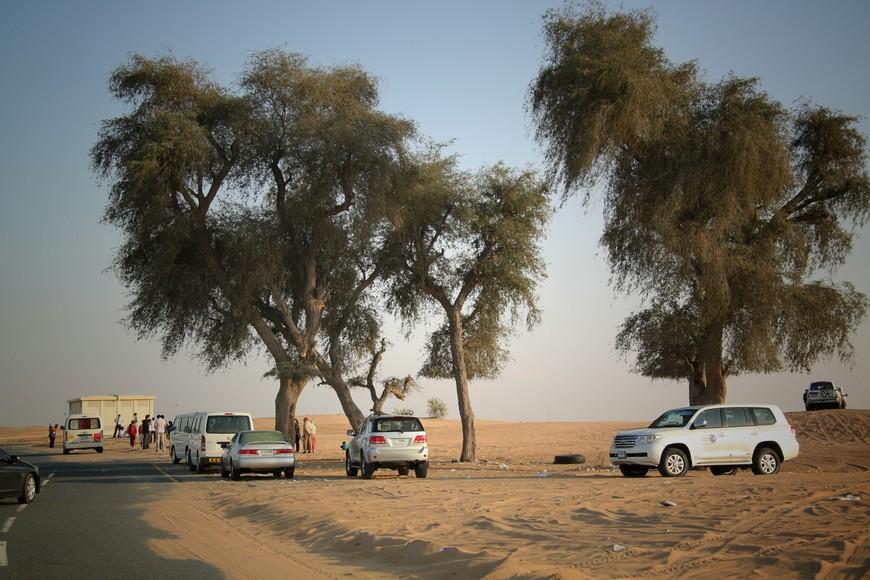 """Пустыня Руб-эль-Хали. занимает большую часть страны, называется Руб-эль-Хали, что в переводе с арабского означает """"пустой квартал"""""""