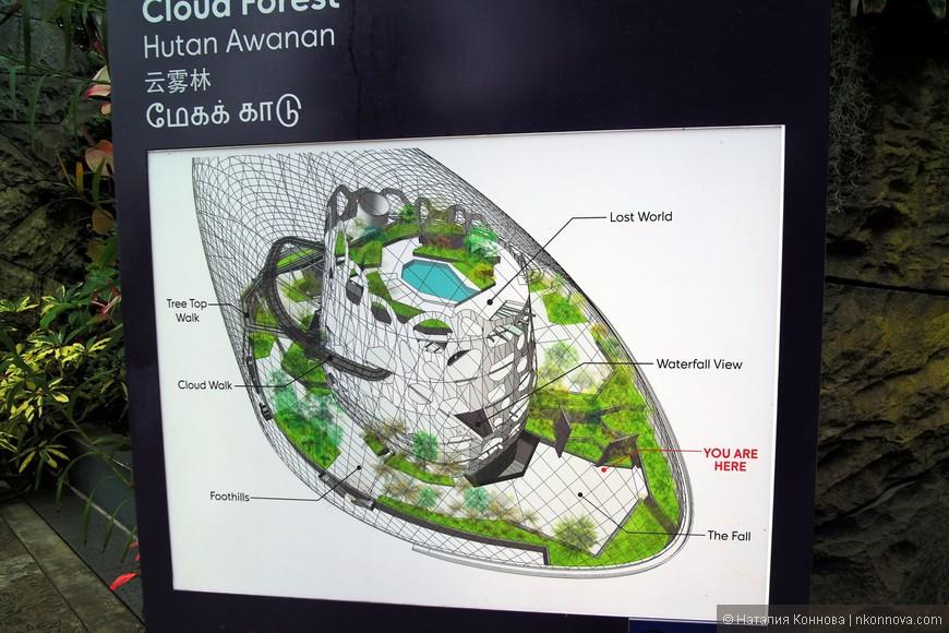 Схема охлаждаемой оранжереи с повышенной влажностью - Облачный лес.