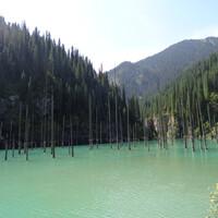 Озеро Каинды (Береза - каз.) образовалось в результате землетрясения 1911 года. Вода хлынула в ущелье и залила ели, которые так и остались стоять.