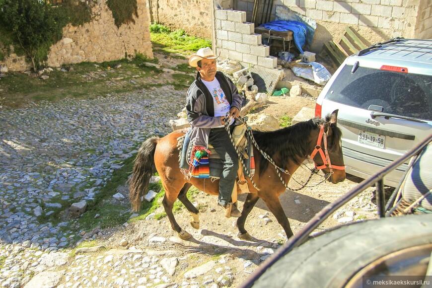 Лошадь- до сих пор, одно из самых популярных средств для передвижения.