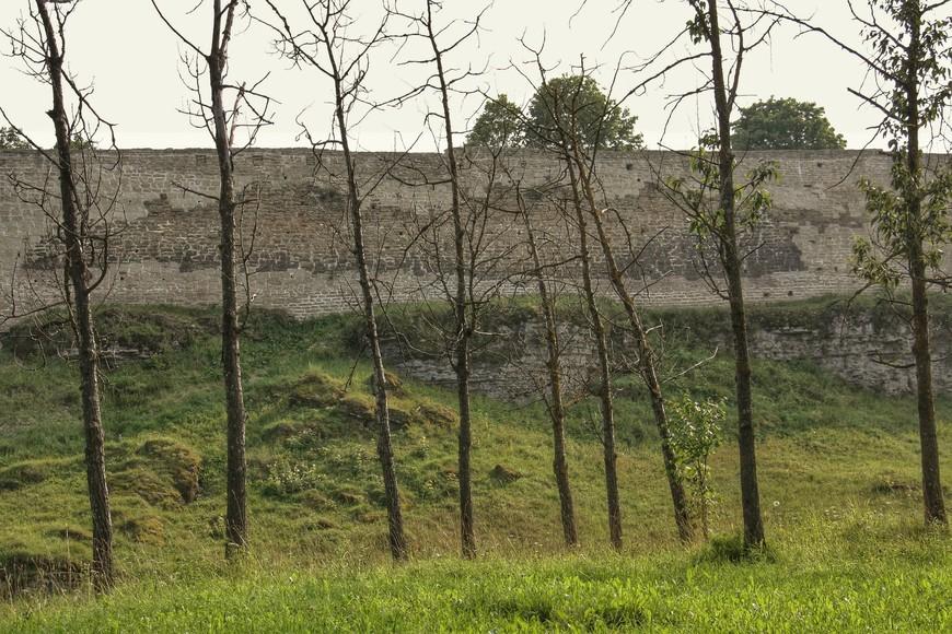 Вот так из леса смотрели супостаты на Жеравью гору, на которой стояла крепость Изборск выдержавшая восемь осад.
