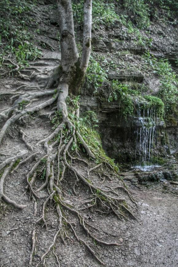 Двенадцать источников карстово-трещенного типа, возрастом более 1000 лет, стали наиболее известны в 17 веке. Вода минеральная, вкусная.