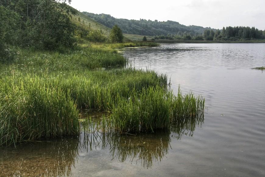 Вода из ключей впадает в Городищенское озеро