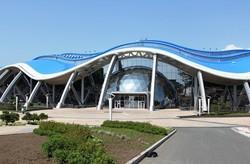 Крупный океанариум откроется на острове Русский в сентябре