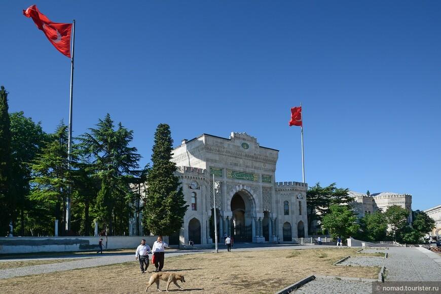 Стамбульский университет.