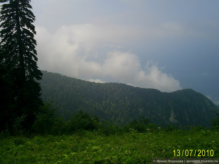 В горах Абхазии.