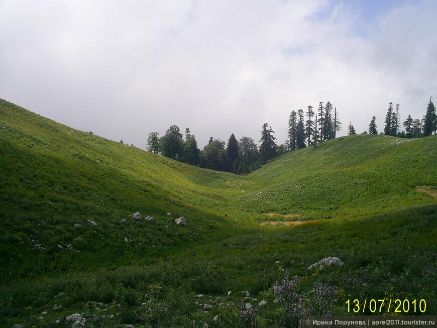 Горные луга Абхазии.