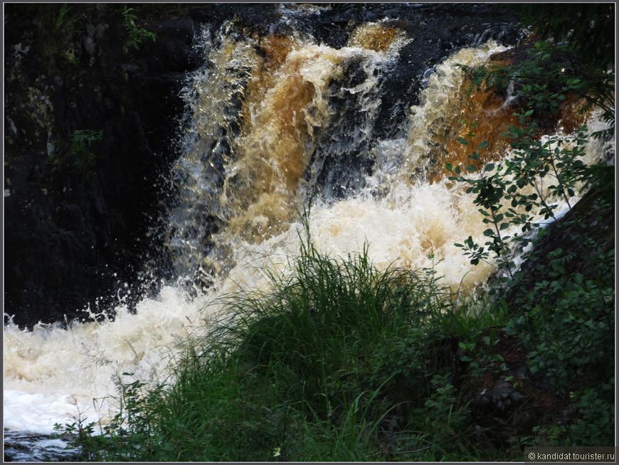 Коричнево-черный цвет воды - это не вина камеры или фотографа. Такой цвет воде придает почва. Что-то в ней есть...