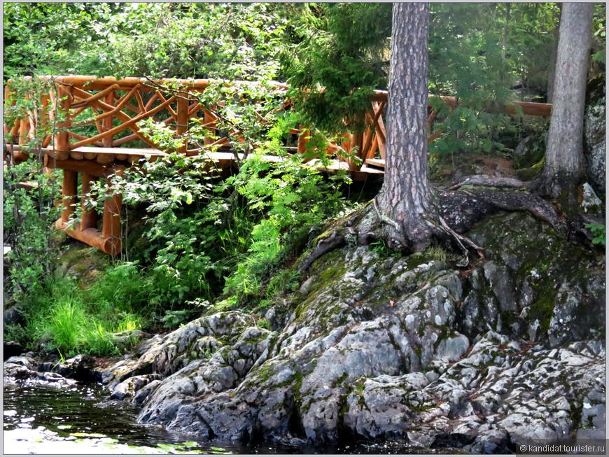И на камнях растут деревья или все для удобства туриста.
