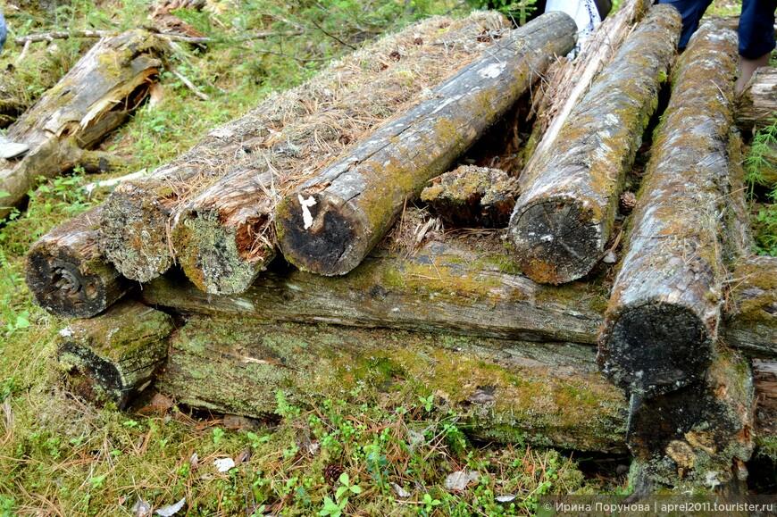 Медвежий лабаз. Здесь захоронены кости медведя, принесённого в жертву на Медвежьем празднике. Пока лабаз и кости внутри целы, медведи обходят стойбище стороной...