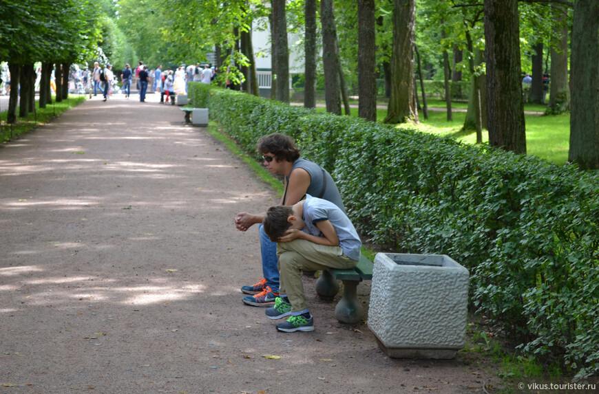 Тем временем Витя становится все хуже. Пока я снимала дроздов, он сидел на скамейке, а потом и вовсе стал садиться прямо на землю там, где не было скамеек. Мы решили дойти до ближайших шутих и возвращаться в Петербург.