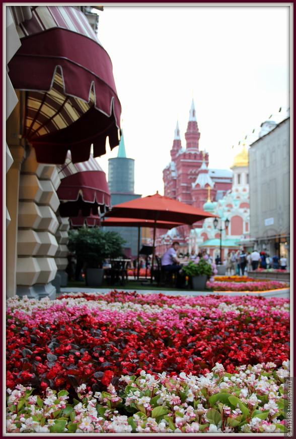 """Выйдя на Никольскую улицу , я увидела цветочный ковер, который """"расстелили"""" вокруг ГУМа флористы."""