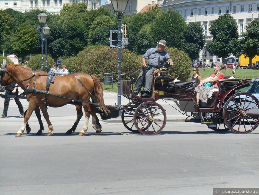 Можно прокатиться на лошадке
