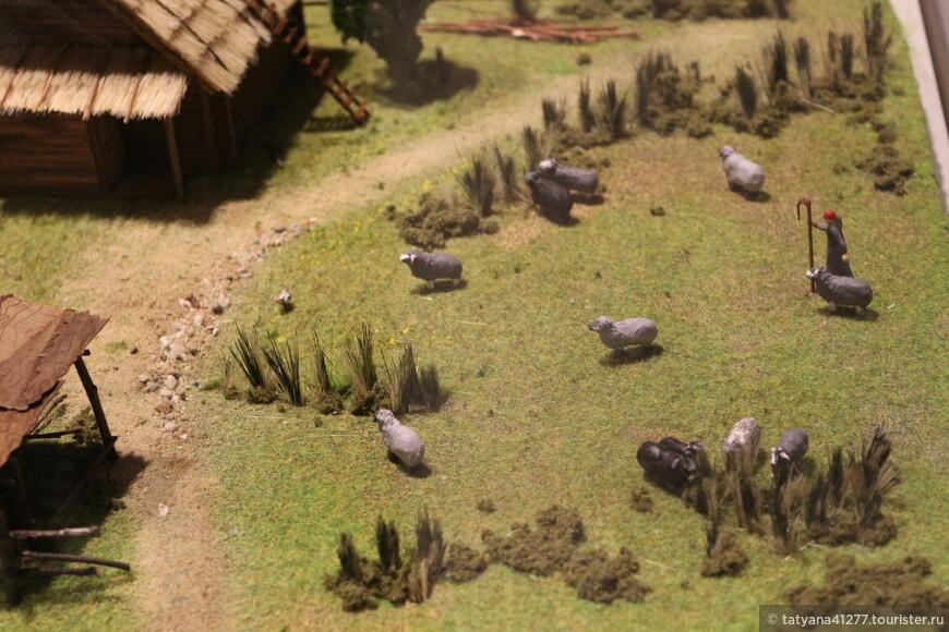 Вот так мирно паслись барашки, на территории Болгара.