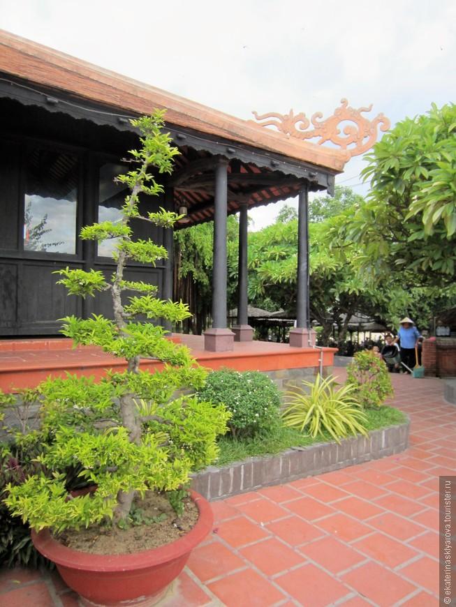 Одной из главных достопримечательностей Вьетнама я считаю природу. Здесь все растет и цветет.